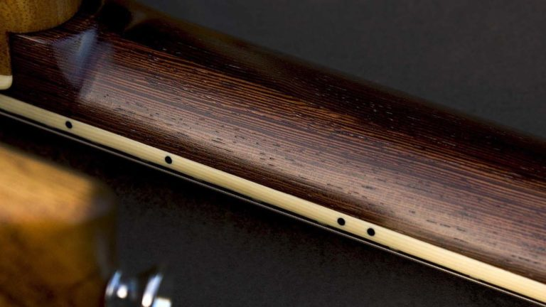 Wenge Evo neck with ivoroid binding.
